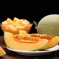 求购新疆吐鲁番正宗 西州蜜 香甜可口哈密瓜